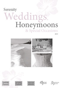 Weddings & honeymoons 2013